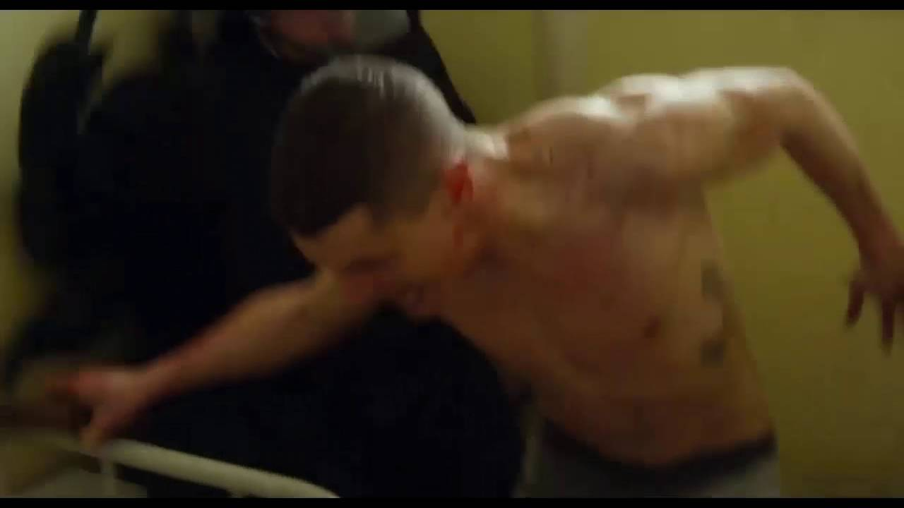 starred up download