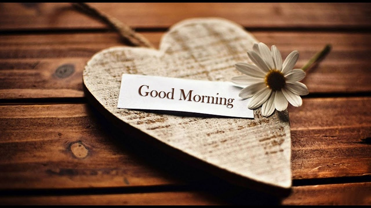 Latest good morning wishes sms greetings whatsapp video message 3 latest good morning wishes sms greetings whatsapp video message 3 youtube kristyandbryce Choice Image