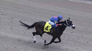 Gulfstream Park Replay Show | August 4, 2019