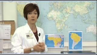 Informasalute 04/06/2014 - Viaggi internazionali, le vaccinazioni