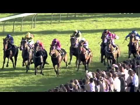 2004 All Aged Stakes- Private Steer
