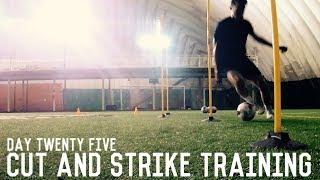 Cut and Strike Training | The Pre-Preseason Training Program | Day Twenty Five