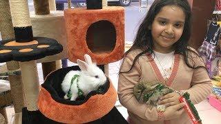 نتسوق العاب وفساتين للأرانب Shopping toys for rabbits