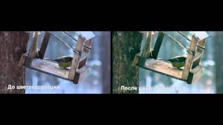 Цветокоррекция в видео(Небольшое видео с отснятым материалом без цветокоррекции и после цветокоррекции., 2014-11-22T06:21:37.000Z)