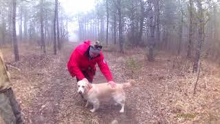 Работа поисковых собак + Блины!