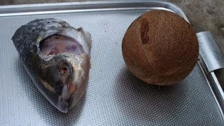 Village Food | Fish head with coconut milk | Chef curry recipes