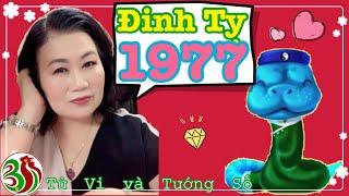 Đinh Tỵ 1977 - Sa Trung Thổ năm 2019 | Tử Vi Và Tướng Số