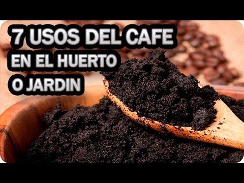 7 Usos Del Cafe En El Huerto O Jardin || La Huertina De Toni