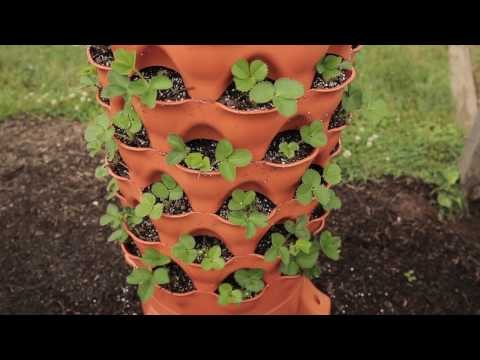 Quick Start Gardening Guide: The Garden Tower 2