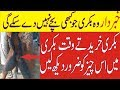 41| This type of Goat never Give Babies||کونسی بکریاں کبھی بچے نہیں دے سکتی|Goat farming in pakistan