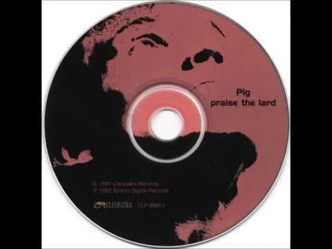 PIG - Angel