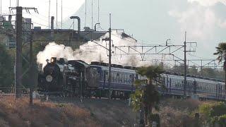 2020年1月11日 「SLぐんま よこかわ」 蒸気機関車C61 20+12系客車 5両+電気機関車EF64 1001 信越線 磯部~安中