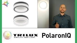 TRILUX PolaronIQ LED Wand- und Deckenleuchte WD1 WD1D
