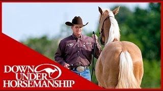 Clinton Anderson: Training a Rescue Horse, Part 4  Downunder Horsemanship