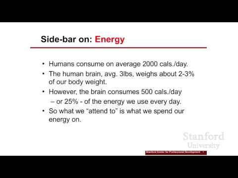 Stanford Webinar - Design Your Life: Part I: Reframe Your Passion