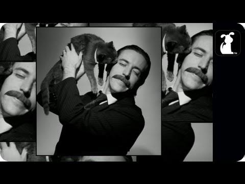 Scatman John – Scatman – Cat Man Pet Parody