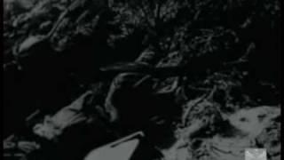 Бои под Выборгом 1941 г. Немецкие хроники
