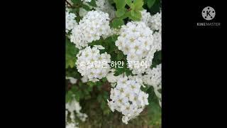 서울식물원에서 아침을.…