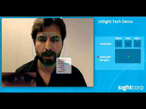 insight-tech-demo---individual-face-analysis-software