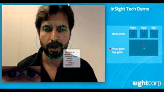 InSight Tech Demo - Individual Face Analysis Software