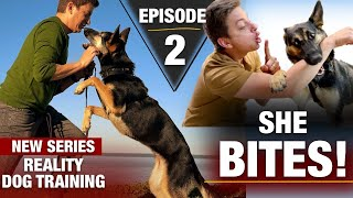 Where to Start with a TOTALLY UNTRAINED DOG: Reality Dog Training Episode 2
