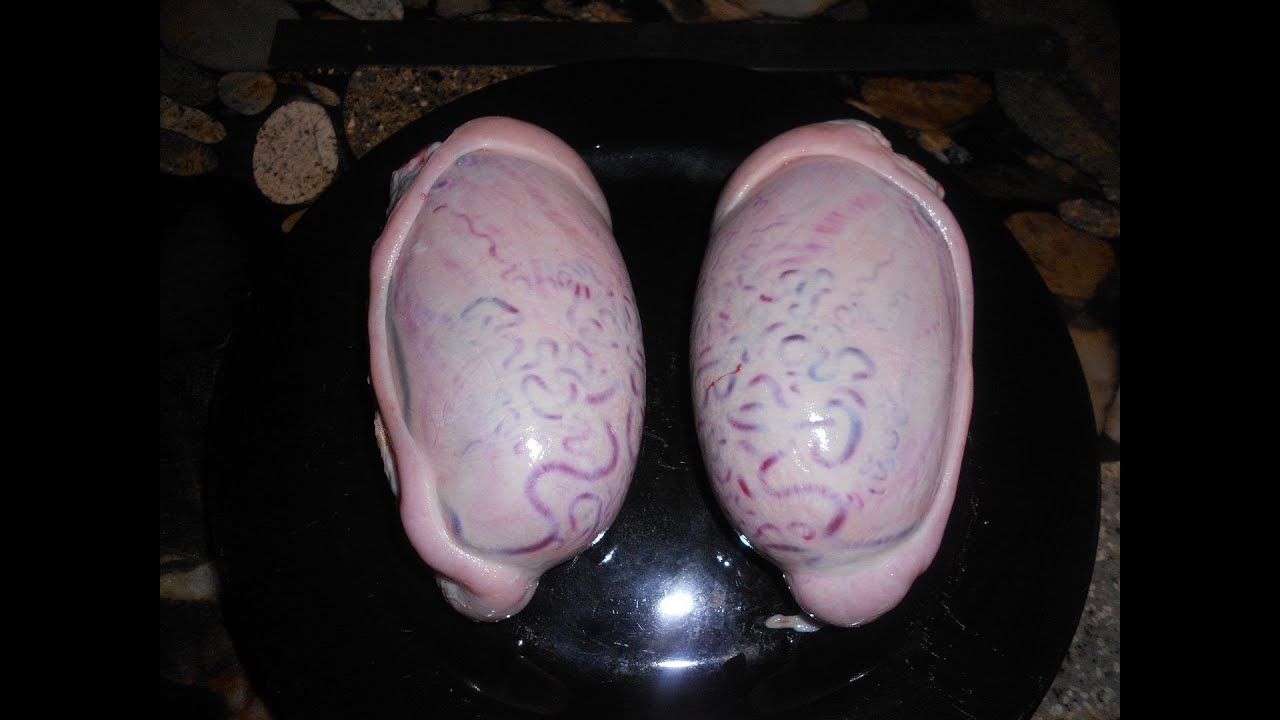 Testicles Stock Photos and Images. 563 Testicles pictures ...