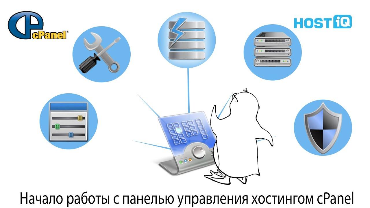 Начало работы с панелью управления хостингом cPanel | HOSTiQ
