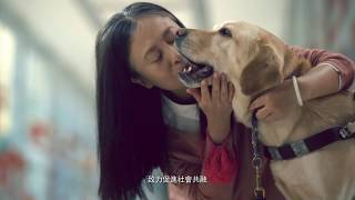 The Link 'Guide Dog' DDB Group Hong Kong