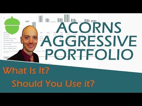 Acorns Aggressive Portfolio - What is the Acorns Aggressive Portfolio & How to Use It
