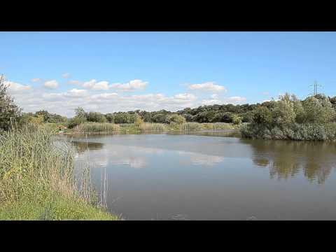 BURTLE LAKES,  BURTLE, WESTHAY, SOMERSET