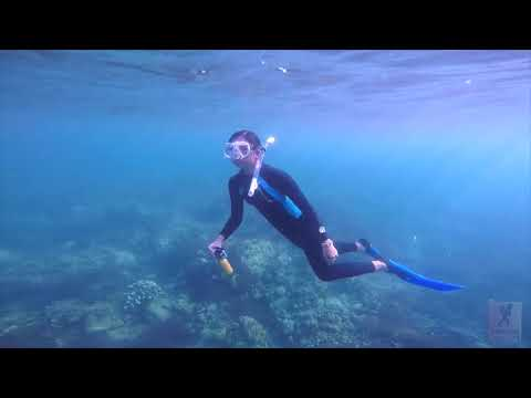 Freediving At Mabini, Batangas, Philippines