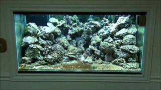 Diy Led Reef Aquarium Light - Part 3