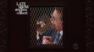 Stephen Colbert's Midnight Confessions, Vol. XXXI