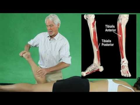Deep Tissue Myofascial Release Plantar Fasciitis Treatment