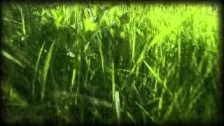Runrig - Things That Are
