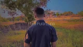 Petrus Mahendra - Pura Pura Lupa ( Steve Cover )