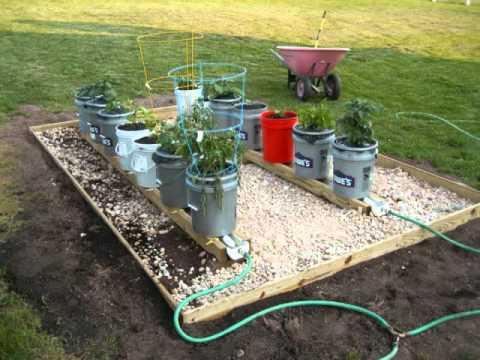 Self Watering Rain Gutter Grow System From Douglassville