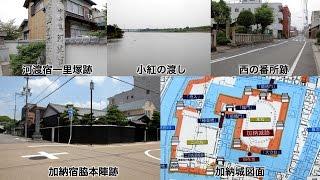 中山道河渡宿・加納宿と岐阜城[Network2010]