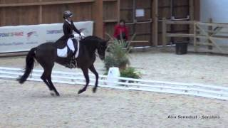Championnat de France As et Amateur Dressage
