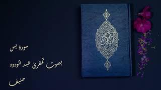 Abdelwadoud Haneef I Quran I Surah Yasin I عبدالودود حنيف I سورة يس I 4K Best Quality Sound
