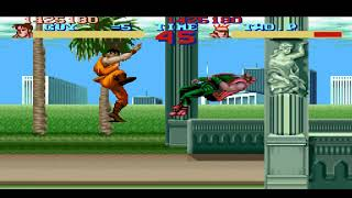 FINAL FIGHT GUY STAGE 5