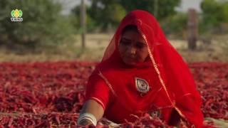 Видеоролик об Индии