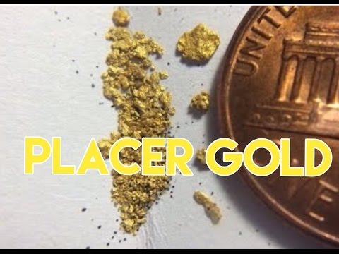 South Carolina Gold Prospecting - Bazooka,panning