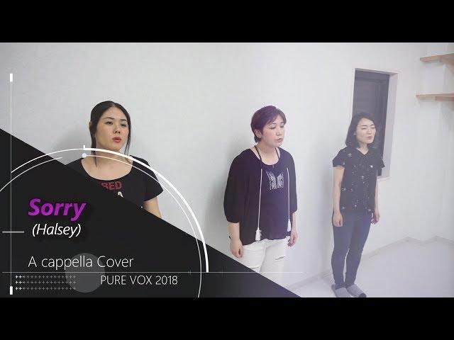 【洋楽カバー アカペラ】Halsey-Sorry/A cappella Cover