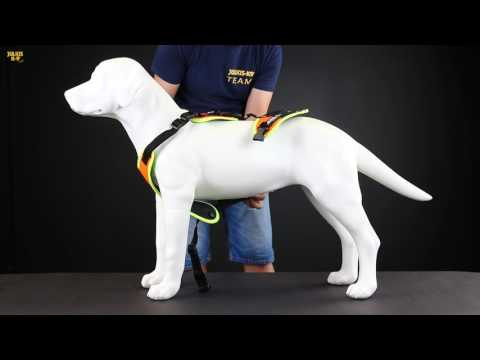 Mantrailing dog harness from JULIUS-K9®