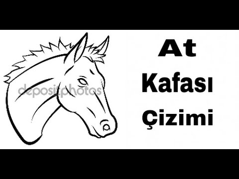 At Kafasi Cizimi Youtube