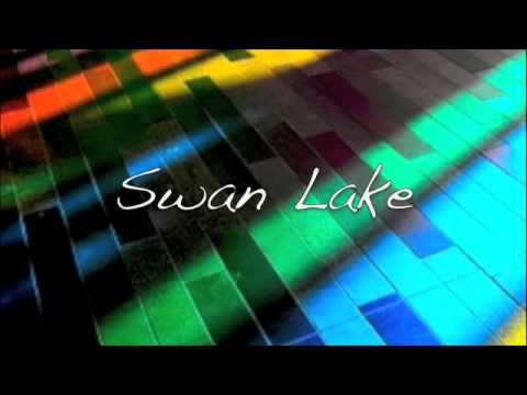 Swan Lake (Remix)