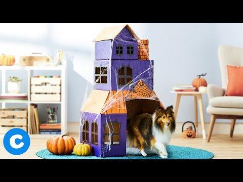DIY Haunted Cardboard Dog House | Chewy Crafts