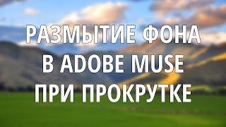 #Размытие фона в #AdobeMuse, при прокручивании страницы, как на #Flicr