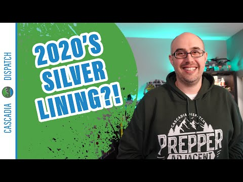 What Could Possibly be 2020's Silver Lining? - Prepping for Non-Preppers #BetterPrepared